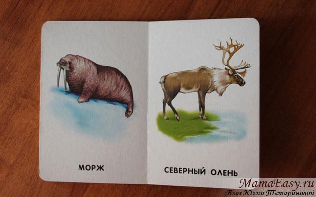 Книжка-картонка для малышей с животными